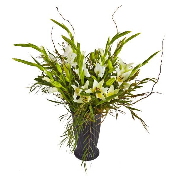 התמונה הראשית של זר פרחים - שרביט לבן
