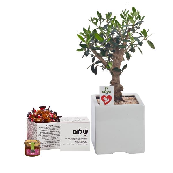 התמונה הראשית של עץ השלום לראש השנה