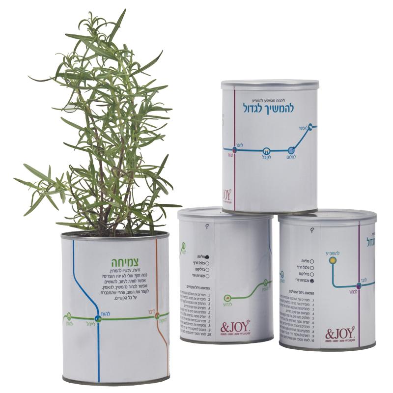 התמונה הראשית של ערכת גידול צמח תבלין מסדרת בדרך שלך