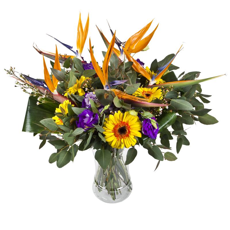 התמונה הראשית של זר פרחים - גן עדן - בכלי