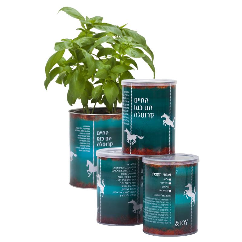 התמונה הראשית של ערכת גידול צמח תבלין - החיים הם כמו קרוסלה